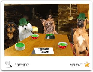 St. Patrick's Day Cheers ecard with dogs
