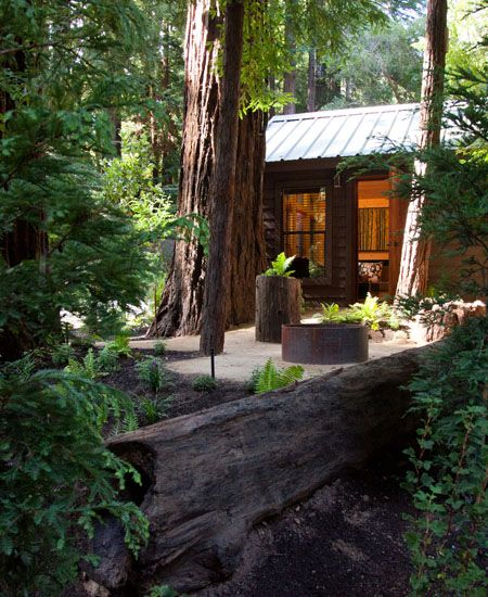 24 Best Redwood Cabin Images On Pinterest Architecture