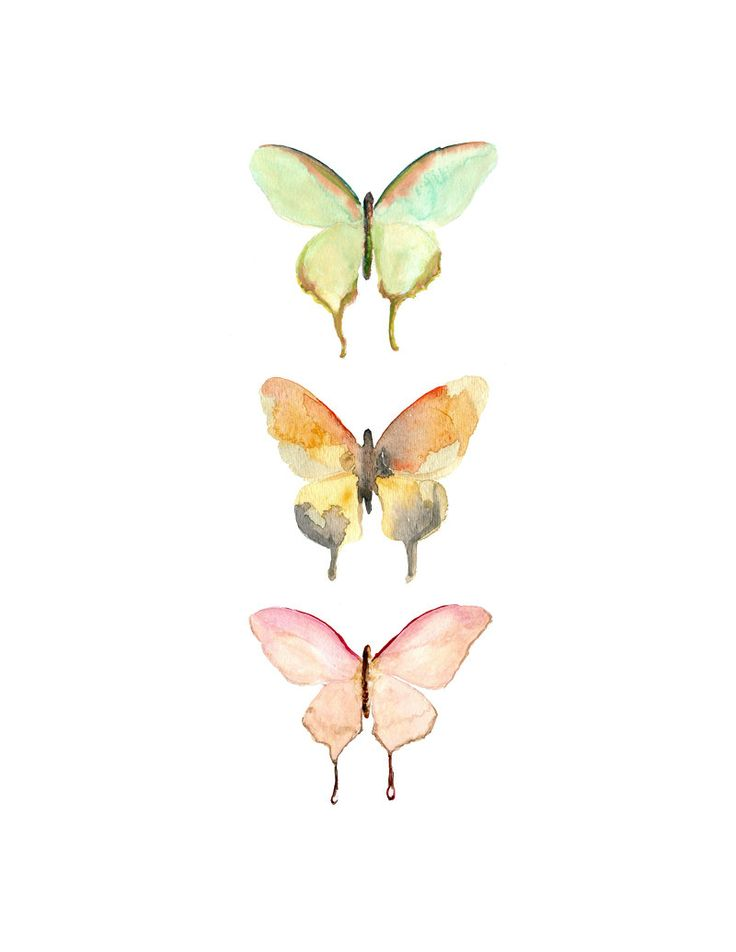 Watercolor Butterfly Print.  Swallowtail Butterflies Archival Print of my Original Watercolor Butterflies.  Gift for Her.  Nature Decor. $20.00, via Etsy.