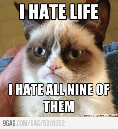 Oh Grumpy cat, I love you so.