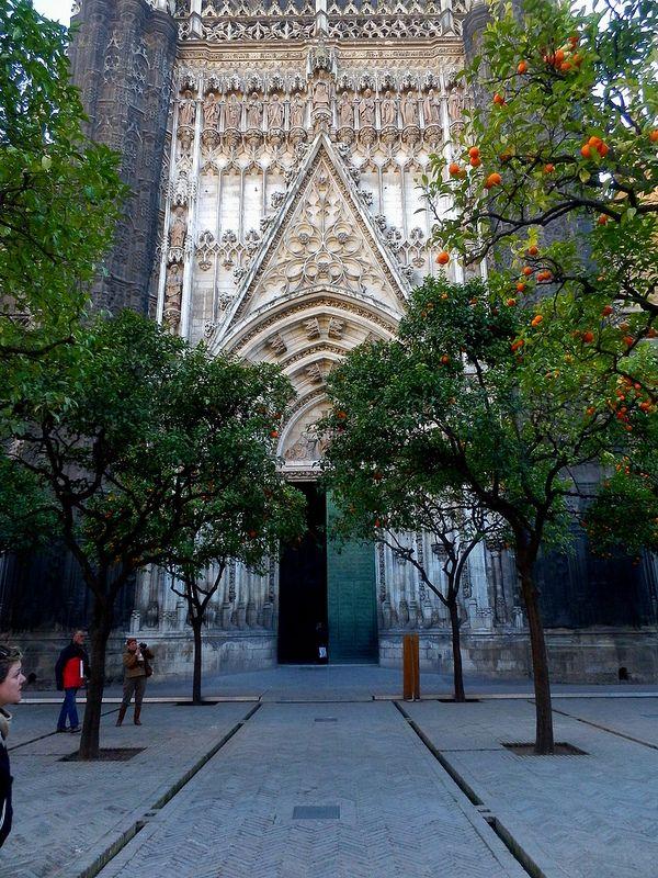 Entrada A La Catedral De Sevilla Desde El Patio De Los Naranjos