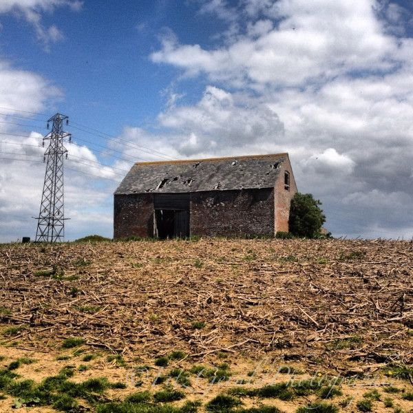 Rustic derelict barn, at the lovely Bluebell woodland walk, nr Eastbourne, East Sussex