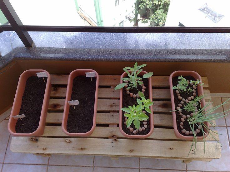 LOCAL Antes de tudo, você precisa de um lugar que tenha sol. No nosso caso, será a varanda do apartamento. As plantas precisam de um local que receba, por dia, ao menos 5 horas de sol. A horta pode...