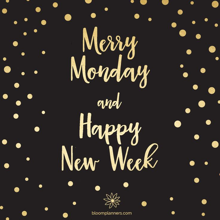 Merry Monday and happy new week! #monday #mondaymotivation #motivation