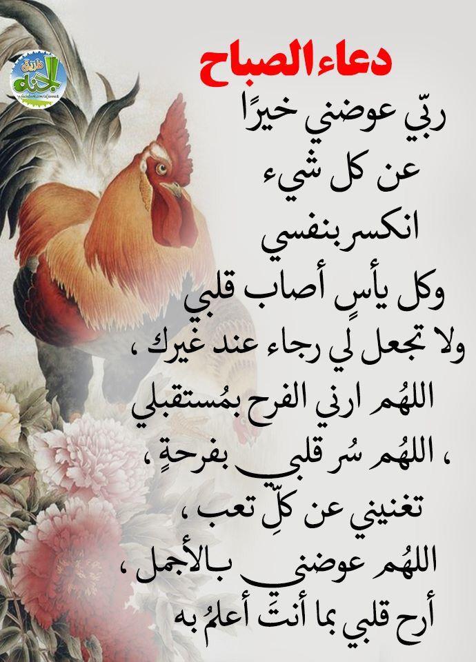 Pin By Barosh Barosh On Douaa Islamic Pictures Ramadan Islam