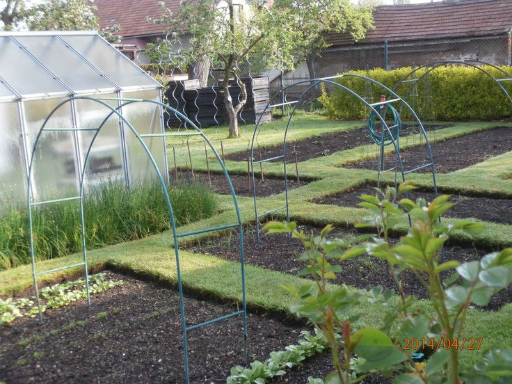 ....v zeleninové zahradě sezóna začala...