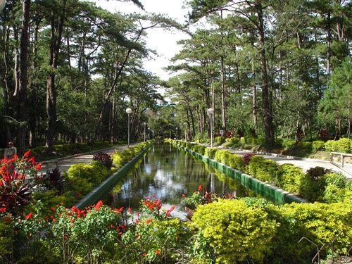 Mountain - Baguio City, Philippines
