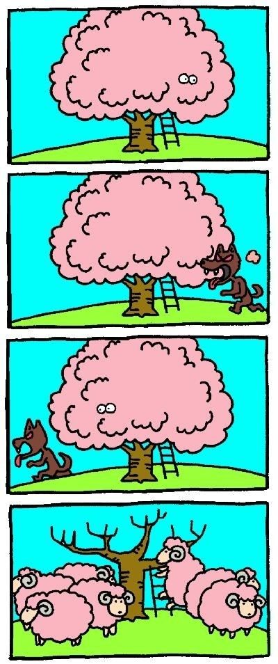 clever sheep!