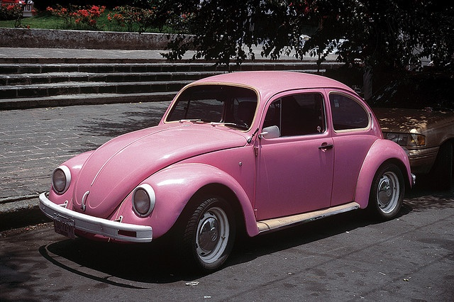 nothing like bombing around the city in my pink bug! such wonderful memories and good times! miss you my pink bug