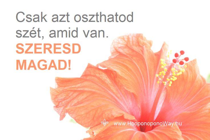 Hálát adok a mai napért. Csak azt oszthatod szét, amid van. SZERESD MAGAD! Tárd ki a karod, nyújtsd ki még jobban, és öleld át az egész világot, amiben élsz. A szeretet magasra emel. Önmagadhoz. Így szeretlek, Élet!  Köszönöm. Szeretlek ❤  ⚜ Ho'oponoponoWay Magyarország ⚜