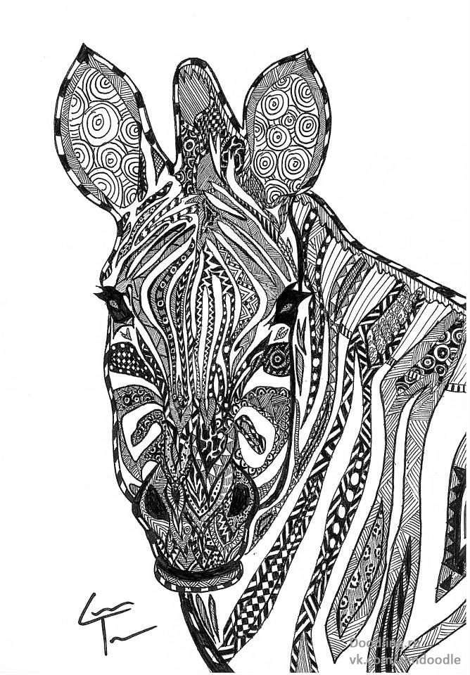 461 best images about zentangle animals on Pinterest ...