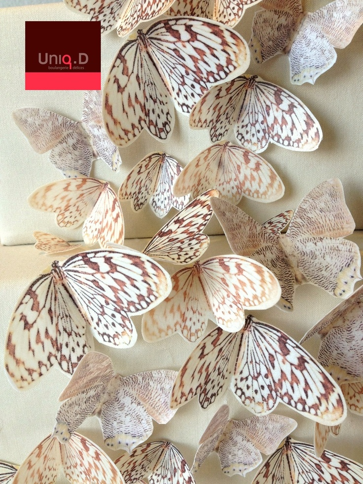 75 PRECUT edible butterflies ready to use - FREE SHIPPING - butterfly theme - wedding cake toppers - Food Accessories by Uniqdots on Etsy