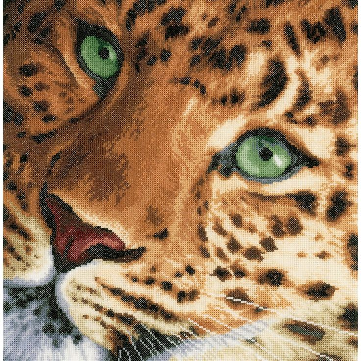 """LanArte Leopard On Aida Counted Cross Stitch Kit-13.75""""""""X13.5"""""""" 14 Count"""