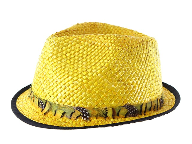 Ésta temporada no podrás pasar sin éste fantástico sombrero de estilo borsalino de ala corta. Está fabricado en rafia y lleva un cinta alrededor de originales plumas. ¡Llévatelo en amarillo!