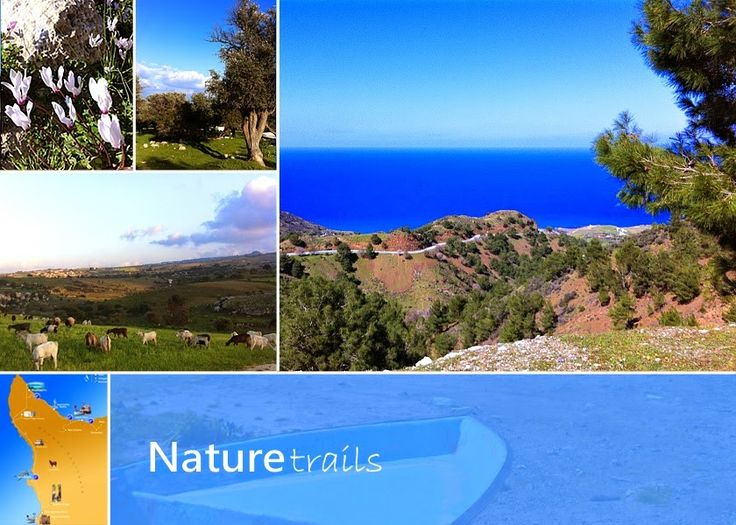 4th Cyprus Walking Festival: 15-21 March #cypruswalks #walkingfestival #naturetrails https://plus.google.com/+PissouribayCyp/posts/8kbTe9TU6it