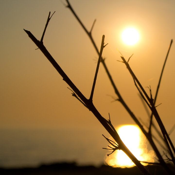 Streamzoo photo -  Classic sunset