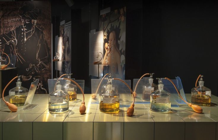 Antique fragrances at the botanical garden - L'orto botanico di Brera.