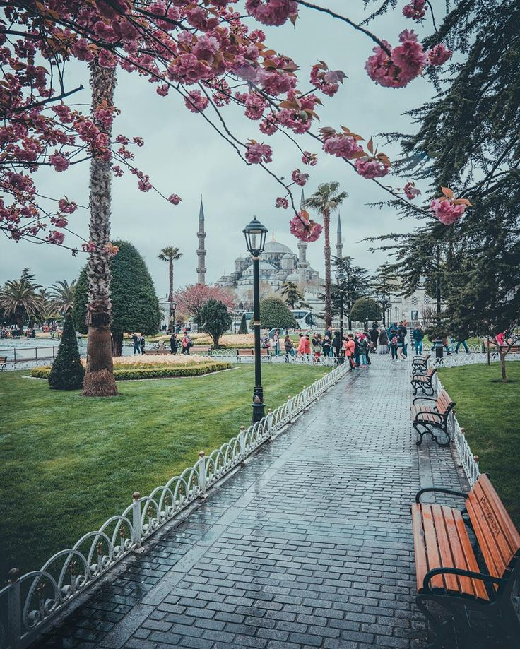 – ilkin karacan karakuş (@ilkinkaracan) Have you ever been in Sultanahmet?😀 #sonyalpha . . . . . . . . . . #bestvacations #photooftheday…