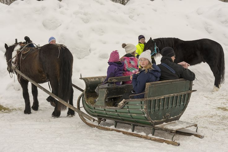 Children trying an old way of transportation on a field day in Mellansel, Sweden.