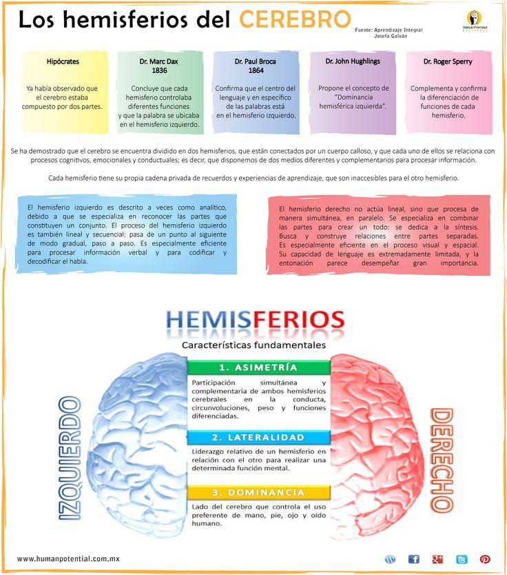 Aunque cada hemisferio del #cerebro tiene funciones diferentes, ambos trabajan simultáneamente, son complementarios y se encuentran en #comunicación constante a través del cuerpo calloso y de sus impulsos eléctricos y bioquímicos.   Fuente: #AprendizajeIntegral en la práctica.