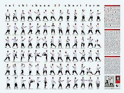 Best 25+ Tai chi exercise ideas on Pinterest