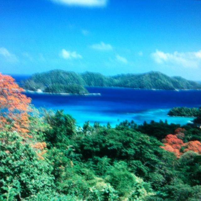 Tobago Island: Tobago Island. Trinidad & Tobago