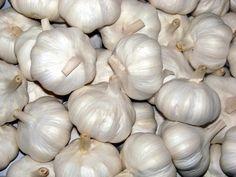 Τα απίθανα οφέλη του σκόρδου για την υγεία και πως να το καταναλώνετε