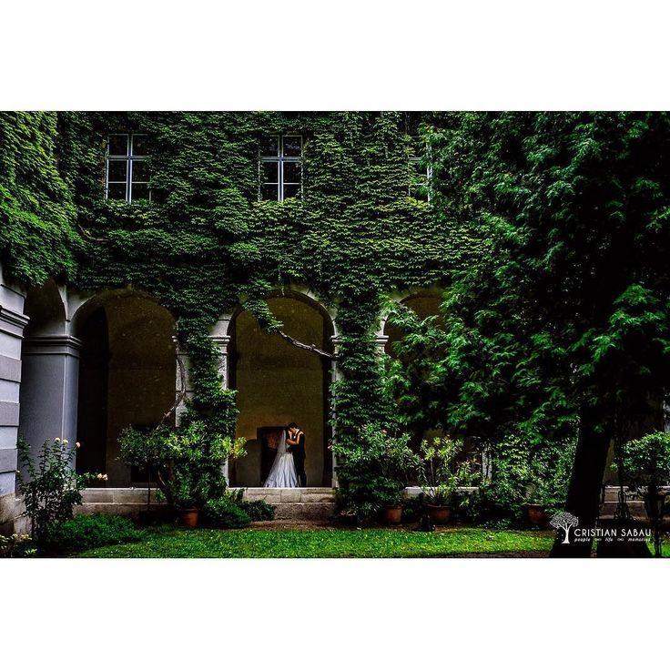 Yiou&Manu's Wedding Day Preview   www.cristians.ro . . #weddingday #huffpostido #instawed #instalove #destinationweddingphotographer #austriawedding #austria #nikond750 #bride #pin #groom #thesecondshot #aotss #wed_stars #yourockphotographer #hochzeitfotograf #weddinginspiration #interiorgarden #neusdorfkirche #neusdorf #viennawedding #ig_vienna #ig_austria #nikonartists