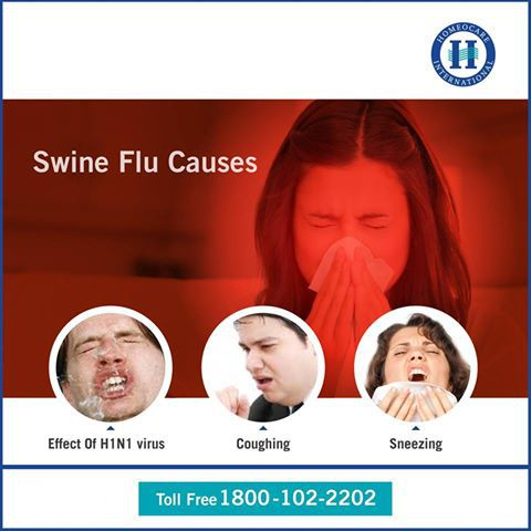 H1N1 Influenza has transmitted from pigs and mostly farm workers and other veterinarians will affect hugely due to this virus. H1N1 Influenza most common Symptoms are Fever, Cough, Sore throat, Body aches, Headache. Homeocare International will provide natural treatments of H1N1 Influenza with Constitutional Homeopathy services and provide good results. For More Details Website: http://www.onlinehomeocare.com/treatment-packages/diseases/h1n1-influenza/ Toll Free: 1800-102-2202