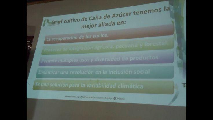 Reunión de Paneleros y Azucareros en el Concejo de Buga-Video de Eugenio...