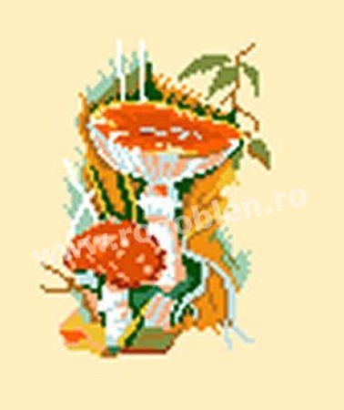 Cod produs 10.42 Ciuperci 8 Culori: 15 Dimensiune: 9 x 11cm Pret: 30.50 lei