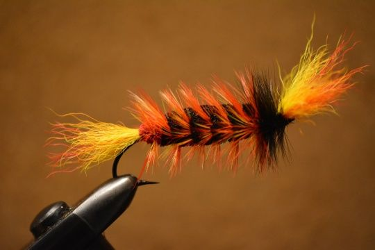 Terry Landry 's Flyfor Atlantic salmon -Pic – Fly dreamers . Join us at Fly dreamers, the fly-fishing network, to find SbS instructions, fly-tying videos and articles by professional tiers from around the world.