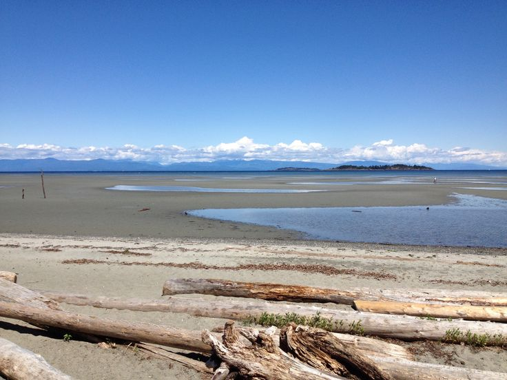 #RathtrevorBeach #SalishSea The beautiful  sand beach stretches out almost a kilometre at low tide and is  renowned for it's natural beauty, its soft sand and warm salt water swimming.
