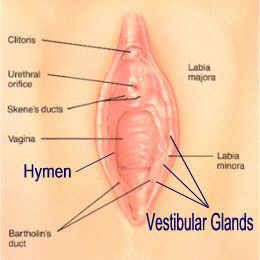 constant clitoris pain