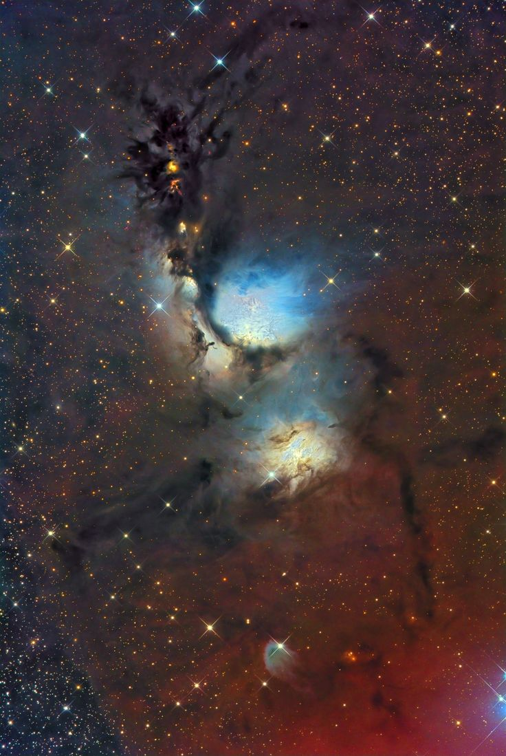 An eerie blue glow and ominous columns of dark dust highlight M78 and other bright reflection nebula in Orion. The dark filamentary dust not only absorbs light, but also reflects the light of several bright blue stars that formed recently in the nebula. Of the two reflection nebulas pictured above, the more famous nebula is M78, in the image center, while NGC 2071 can be seen to its lower left. The same type of scattering that colors the daytime sky further enhances the blue color.
