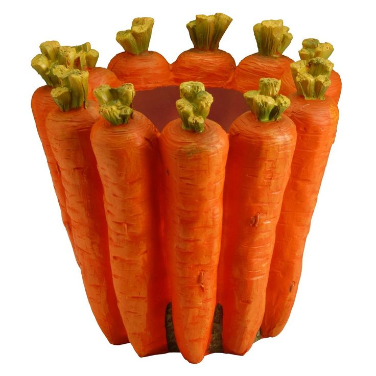 8 Carrot Flower Pot - National Tree Company, Carrot Stick