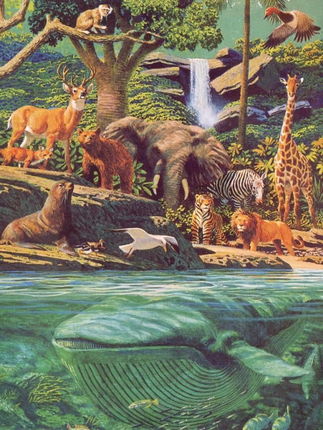 The Creation: sea creatures and wild beasts and domestic animals...Garden of Eden