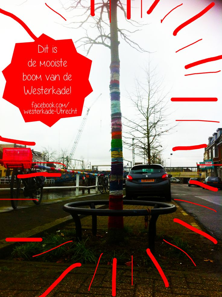 Wij vonden dit ook de mooiste! Op de Westerkade in Utrecht werd de moosite boom gekozen, dit is de winnaar. Er is veel voor gevingerhaakt.