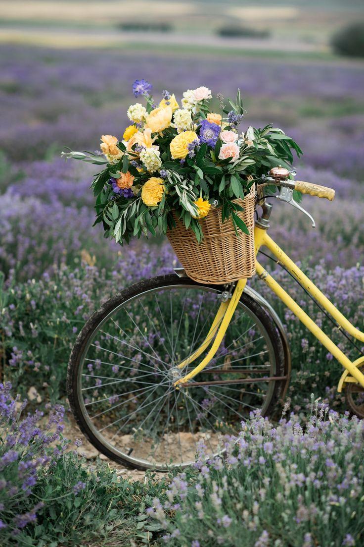 South of France Wedding, lavender field wedding, lavender wedding ideas, lavender inspired wedding, wedding flowers utah calie rose, bicycle flowers, vintage bicycle with flowers