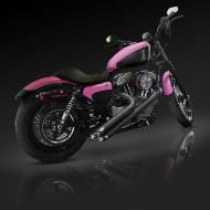 This!!!! I want this!!!!! Pink Harley Davidson...a must have