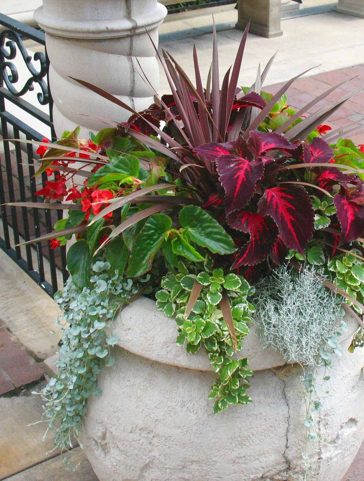 Outdoor Flower Arrangements In Pots