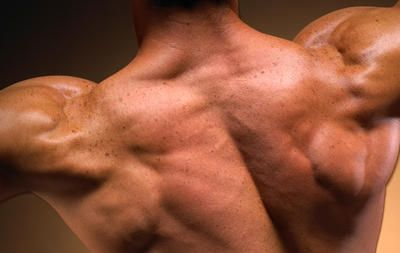 The 11 Best Traps Exercises  http://www.menshealth.com/fitness/best-traps-exercises?slide=12