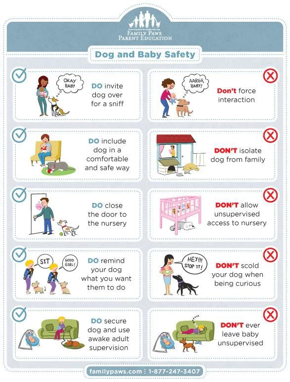 24 best Baby Safety images on Pinterest