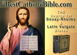 Douay-Rheims Catholic Bible, Gospel According to Saint Luke Chapter 10