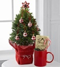 Last minute Gifts .. you still could probably pick up #20 A Mini Christmas tree or plants in a planter or #19 A Gift Basket from a local Gift basket store, Liquor store or Department store