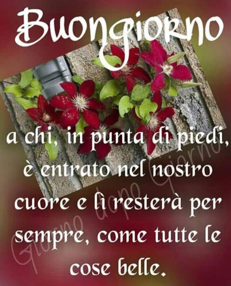 Très 525 best Buongiorno-Buonanotte images on Pinterest | Snoopy  MH67