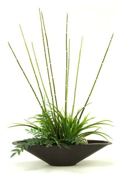 "Home Staging Tip: Use plants and greenery in ""water"" areas of the home (i.e. near kitchen sink, in the bathroom, etc.) 