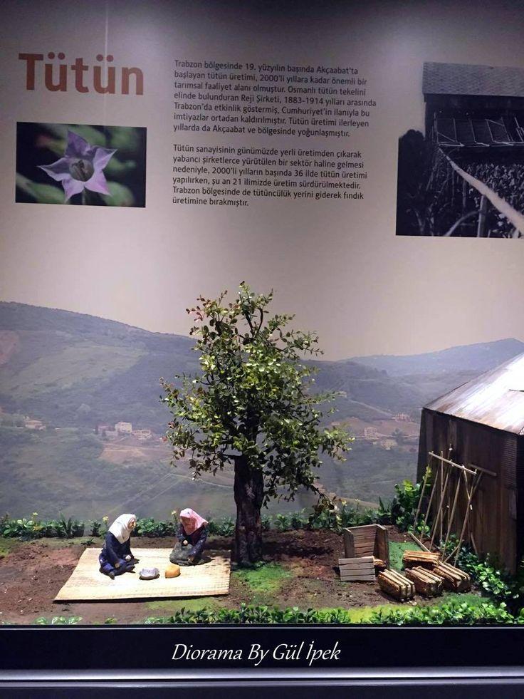 #diorama #art #handmade #polymerclay #fimo #clayart #sculpture #figures #gulipeksanat #trabzon #tütüncülük #fındıkçılık #müze #museum #figür #60s #tabacco #hazelnut #miniature #minyatür #mini #scale #canlandırma #texture #karadeniz #painting #desinger #modelmaking