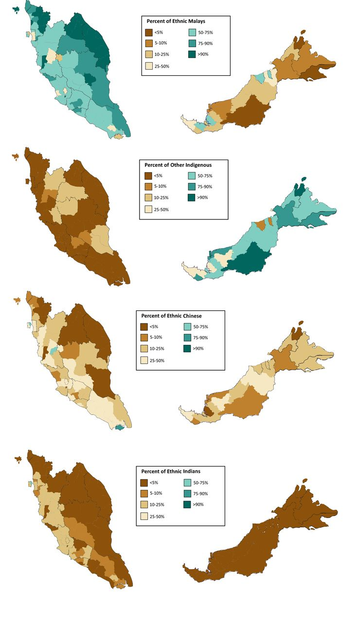 Ethnic makeup of Malaysia, Singapore and Brunei