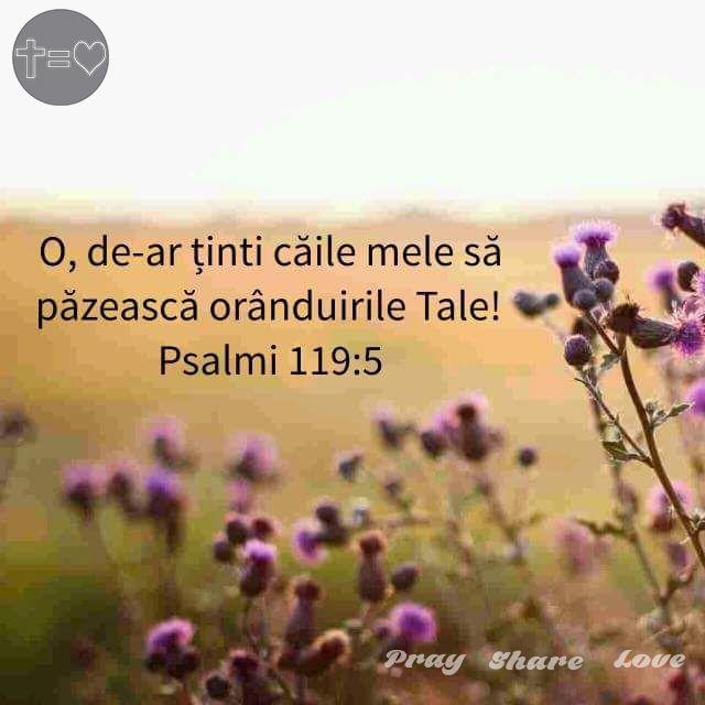 https://www.facebook.com/praysharelove/ Atât de ușor ne îndepărtăm de căile tale, Doamne! #God #neprihănire #ascultare